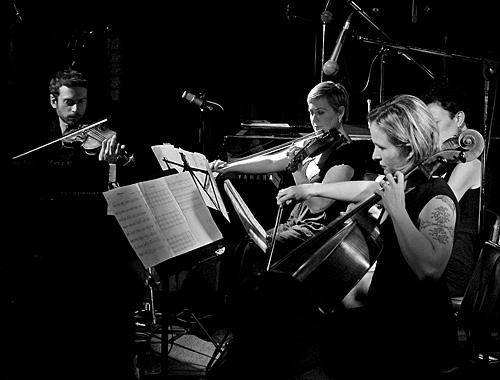 Silo String Quartet