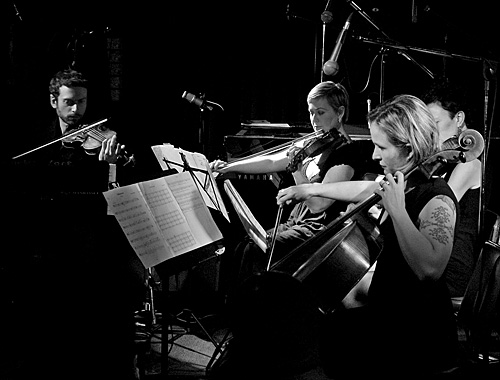 Silo String Quartet